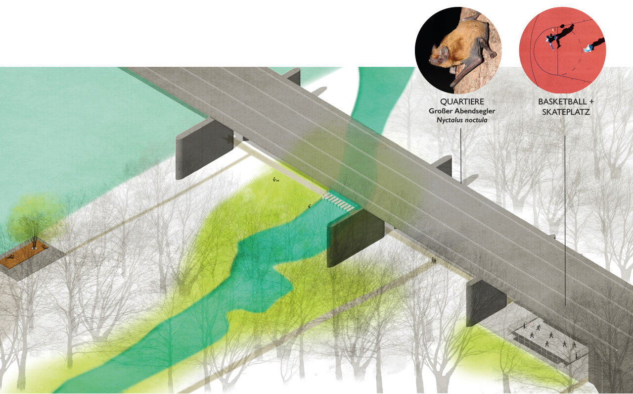 AAD-project-City-Park-Danube-Ingolstadt-Abb_12, Graphic by Studio Animal-Aided Design, Qingyu Liang