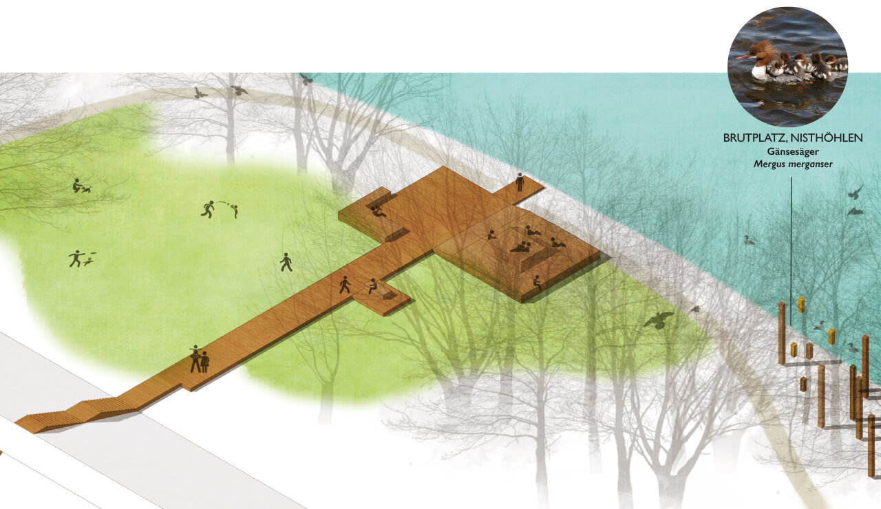 AAD-project-City-Park-Danube-Ingolstadt-Abb_8, Graphic by Studio Animal-Aided Design, Qingyu Liang